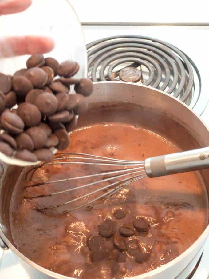 Adding Chocolate Chips to ice cream mixture
