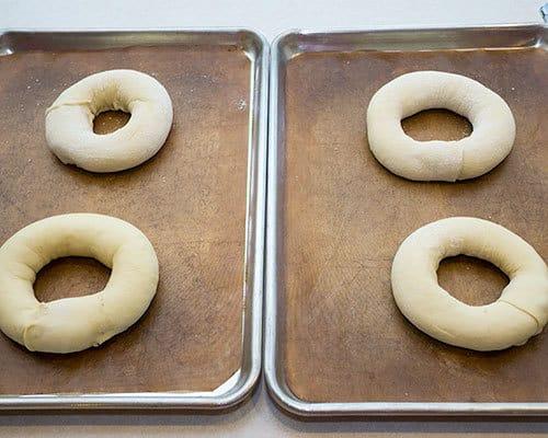 Formed_Rings