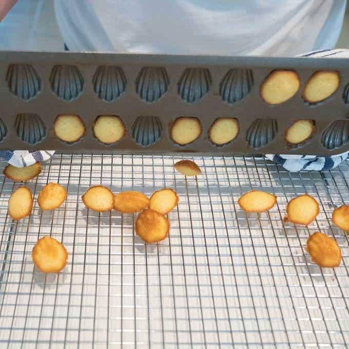 Mini Lemon Madeleines