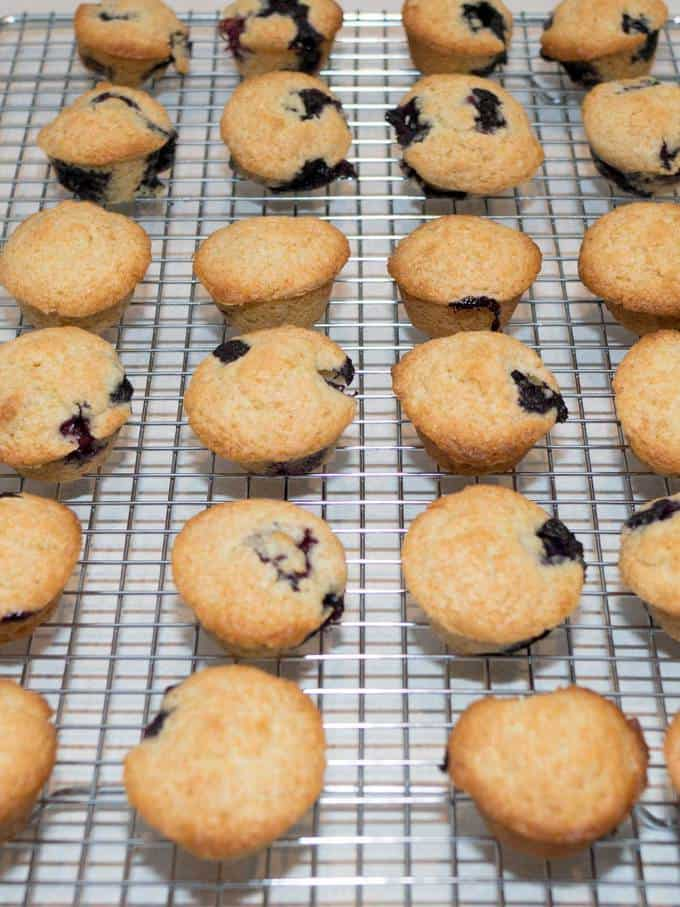 Cooling the Blueberry Mini Muffins