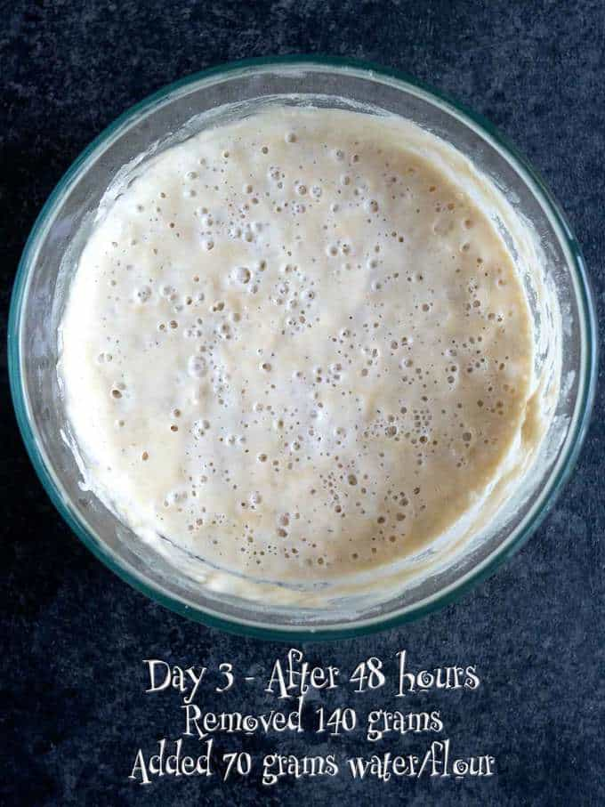 Day 3 of making Sourdough Starter