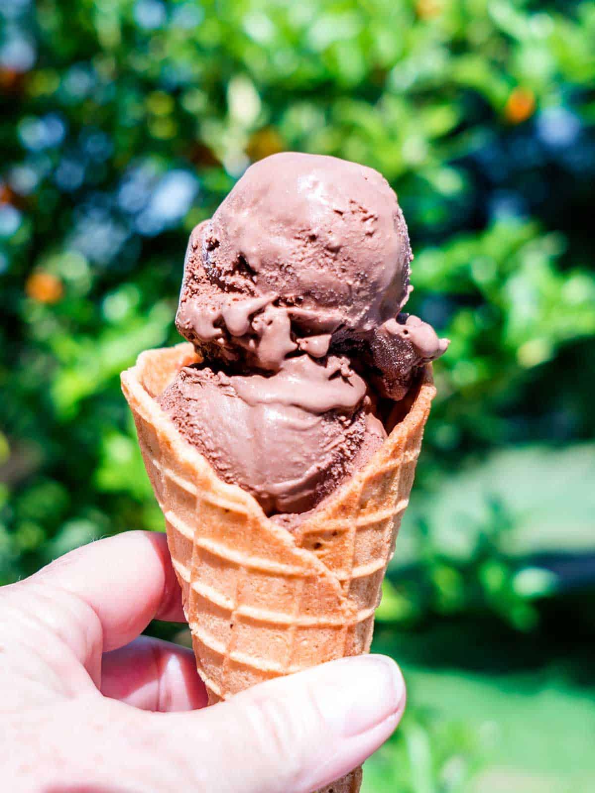Triple Chocolate Ice Cream in Waffle Cone